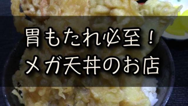 デカいメガ天丼の写真・・・